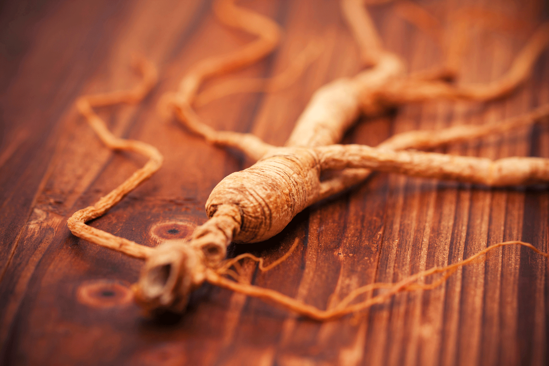Ancient Herbs and Natural Ingredients
